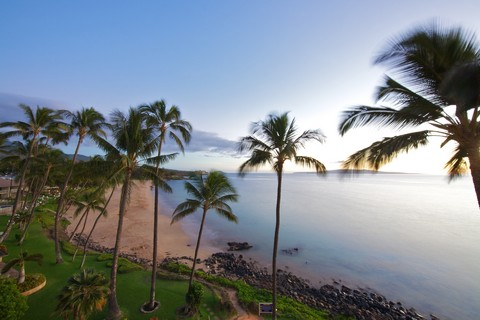 Picture of a sunny day on a beach in Maui, Hawaii.