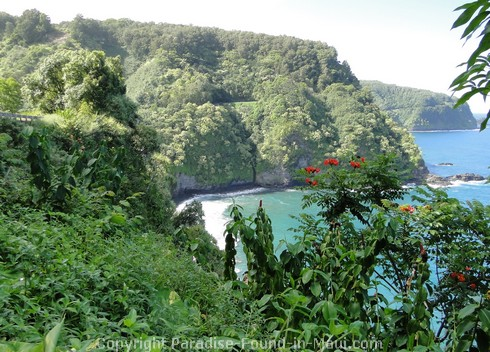 Picture of the Road to Hana viewed from Keanae, Maui.