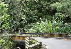 cool bridge on the Hana Highway