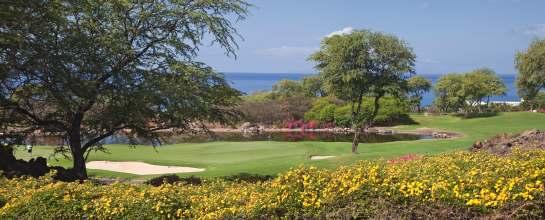 maui golf courses Wailea colourful flowers