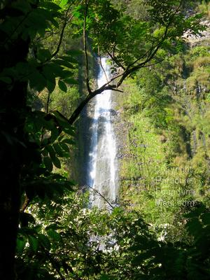 Picture of Waimoku Falls at the end of our hike along the Pipiwai Trail with Hike Maui.