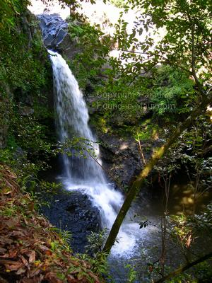 Picture of a Maui waterfall along the Pipiwai Trail.